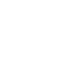 City of Williamsport